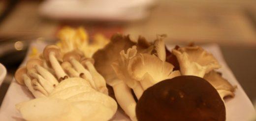 主餐盤,這是素食的養生菇類,份量不多,但吃菇類吃多了也是很飽耶