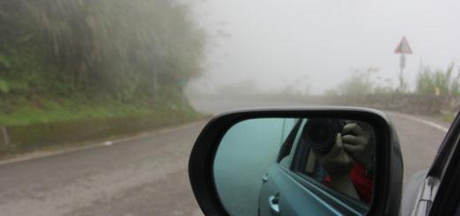 上山沿途都是大物,路況不熟,越開越慢....這張是拍於下山時刻,先放上來是說明上山時要注意一下霧氣