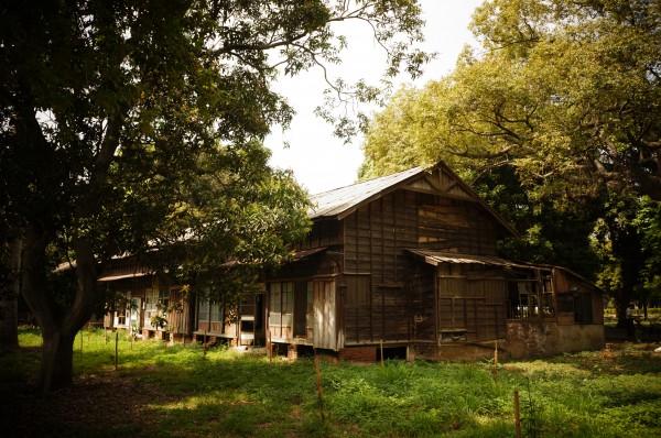 在雲林虎尾的台糖糖廠,有著日式建築老舊宿舍....