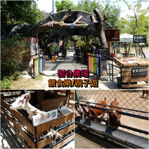 台南景點-樹谷農場-親子遊/餵食小動物